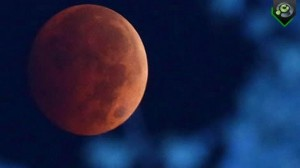 2014-10-08 eclipse